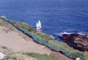 Cricket sail boat viewed from the Cliff House